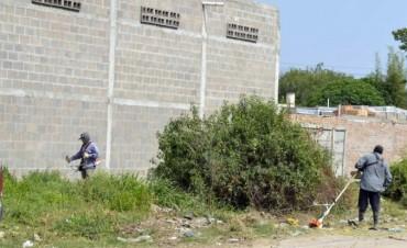 La comuna multará  a vecinos que no mantengan la higiene de su propiedad