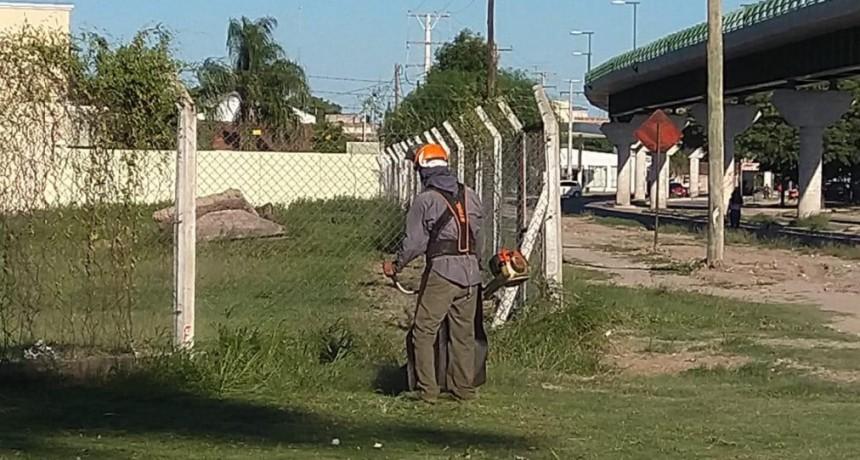 Servicios Públicos realiza un operativo integral en el Club Sarmiento y alrededores