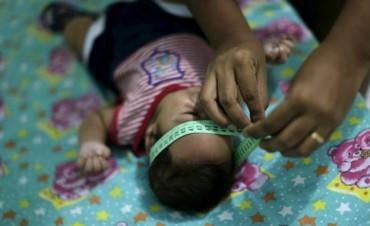 Qué es la microcefalia, el mal que llegó con el virus zika