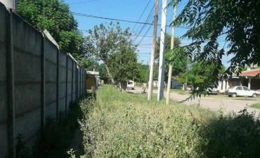 Multaron a más de un centenar de vecinos por arrojar basura a la vía pública