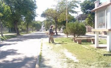 La comuna sumó equipamiento para combatir las malezas en la ciudad