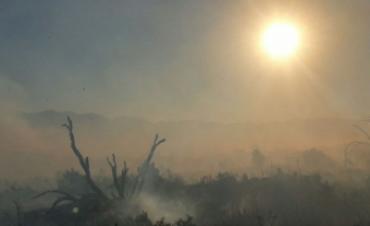 Chubut sufre uno de los incendios forestales más grandes de la historia argentina
