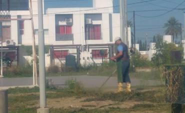 La comuna refuerza los operativos de mantenimiento y limpieza en la ciudad