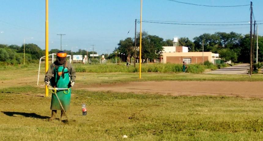 Realizan desmalezamiento y rastreo en diferentes barrios de la ciudad