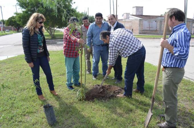 El municipio avanza con el plan de arbolado e higiene en el barrio El Rincón
