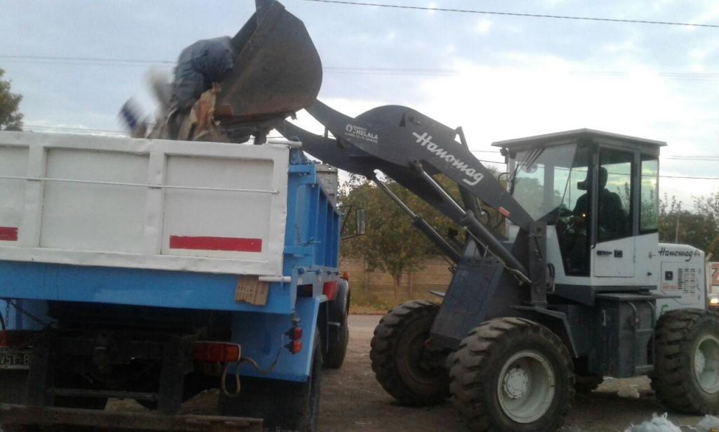 Se realizaron tareas de limpieza y desmalezamiento en distintos sectores