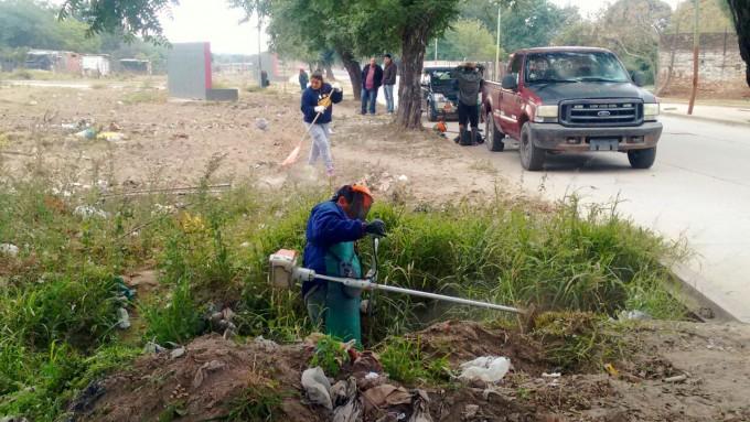 Calidad de Vida y Parques Paseos trabajan en la limpieza y poda de la ciudad