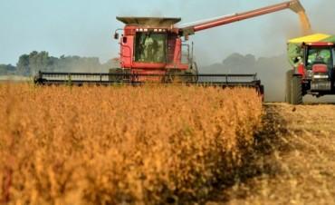 Productores agropecuarios aseguran que