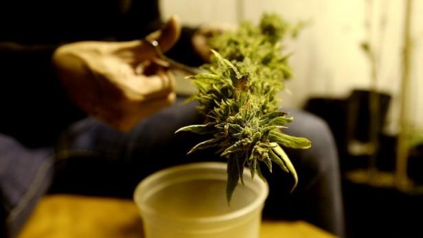 La marihuana aumenta el fracaso escolar en adolescentes