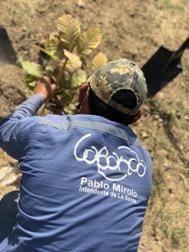 El Plan Municipal de Reforestación llegó al barrio San Fernando con nuevas especies para la plaza saludable