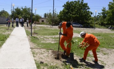 El intendente supervisó la construcción de una plaza en el barrio Sarmiento