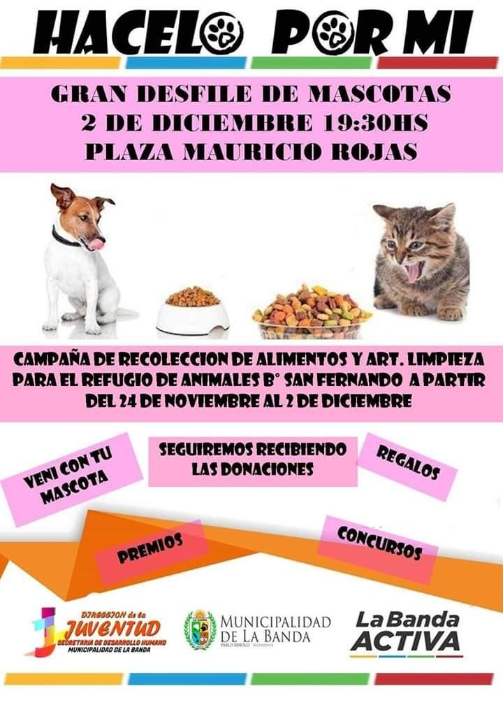 """Con un desfile de mascotas finalizará la campaña solidaria por el Centro de Rehabilitación """"Corazones Callejeros"""""""
